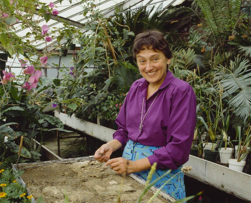 Lynn Margulis found a joyful fulfillment in following her own ideas in biology, and finally, the Medal of Science - but not quite universal recognition