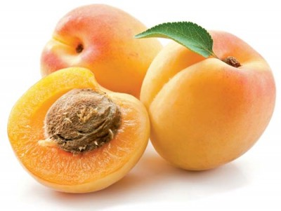 Laetrile from apricot pits apparently does work, cutting down on breast tumors and their spread. But the scientific understanding of the mechanism involved came to a sudden halt when Pharma intervened